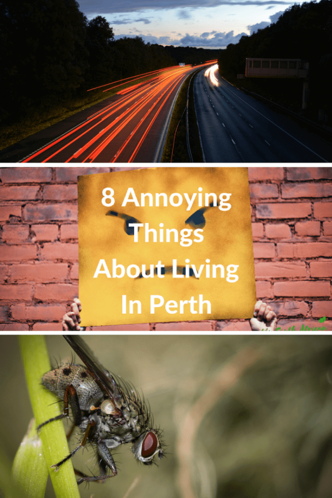 8 Annoying Things About Living In Perth - Proudly South African In Perth