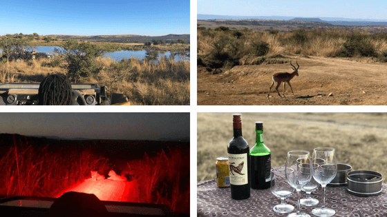 Game Drive Lion Sundowners - Nambiti Private Game Reserve South Africa