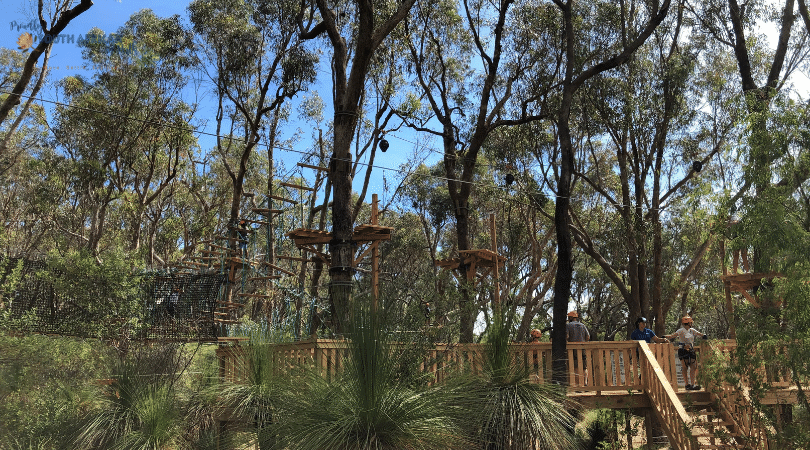 Trees Adventure Yanchep - Proudly South African In Perth