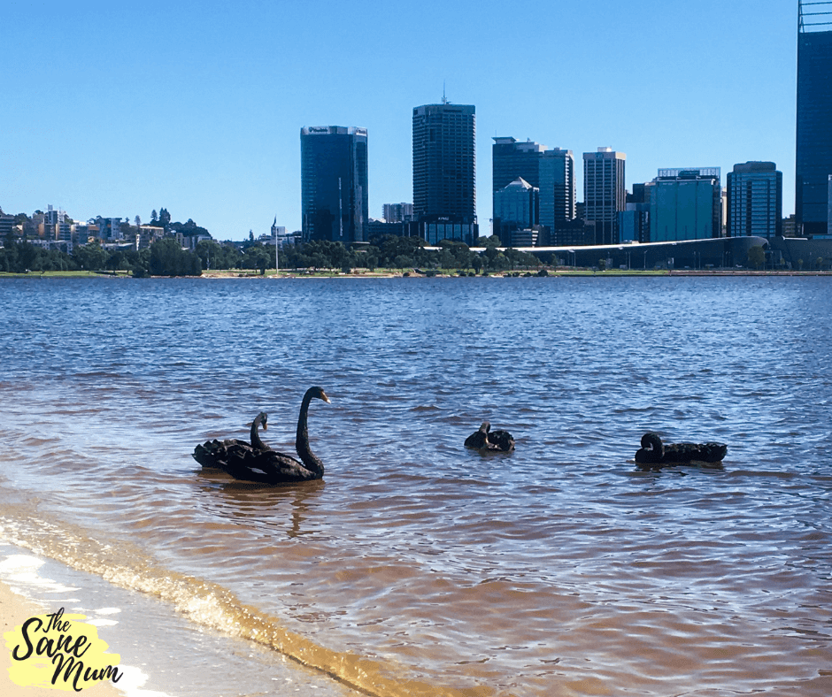 Hidden Beach In Perth City