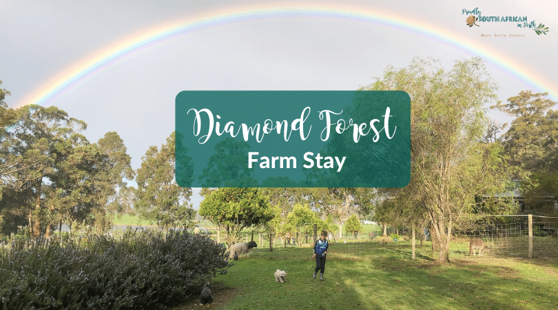 Diamond Forest Farm Stay - Proudly South African In Perth