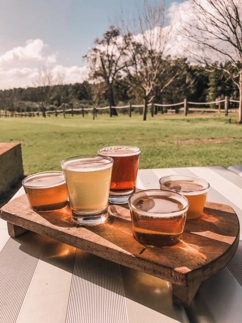 Old Coast Road Brewery Beer Tasting Paddle