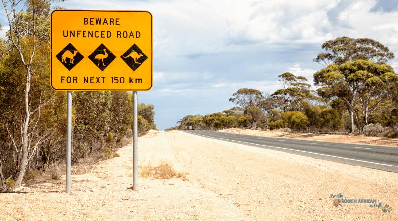 Language In Australia - What Inspired Me To Move To Australia - Reeva Cutting